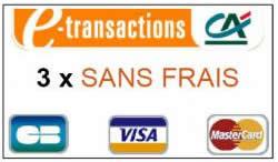 E-Transactions CA